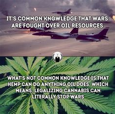 Great, now it'll NEVER be legalized! Telling Lies, Green Party, Environmentalist, Hard Truth, Say Something, Real Love, Tell The Truth, Smart People, Do Anything