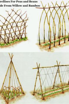 Use green bamboo stakes for the material