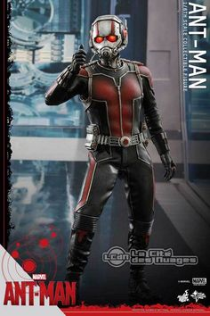 Hot Toys MMS308 Ant-Man Ant-Man Paul Rudd 1/6 Collectible Figurine 12 30cm Hot Toys