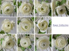 Ranunculus by JILL's Sugar Collection,  Some of the best sugar ranunculas I have seen