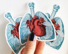 Cyber week sale Lungs and heart, laptop stickers set, Anatomical stickers set, Medicine student gift Macbook Decal, Laptop Decal, Laptop Stickers, Valentines Day Party, Valentine Gifts, Medicine Student, Embroidery Hearts, Heart And Lungs, Love Wall Art