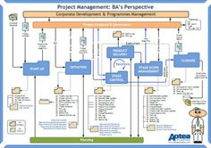 Project Management BA's Perspective