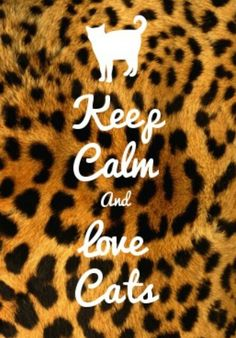 Keep Calm And Love Cats ❤