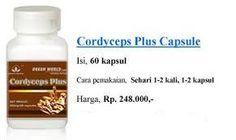 Terimakasih atas kunjungan anda di website resmi Distributor Green World Indonesia. Infp berikut akan membahas sekilas tentang produk cordyceps plus capsule dari Green World, khasiat dan cara pemesanannya untuk anda. Selamat menyimak dan semoga bermanfaat.