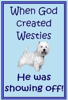 funny westie pictures | so true so perfect