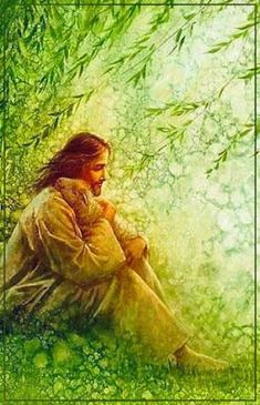 Jesus My Shepherd Jesus Shepherd, Première Communion, Pictures Of Jesus Christ, Lds Art, Jesus Painting, Jesus Christus, Jesus Art, Prophetic Art, Biblical Art