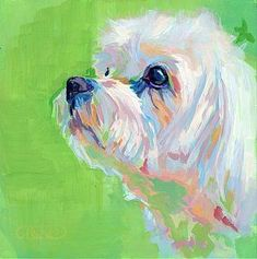 Maltese Painting - Parker by Kimberly Santini
