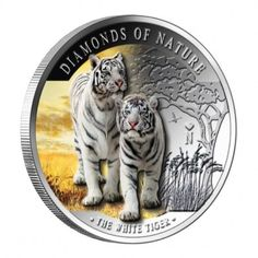 "White Tiger – ""Diamonds of Nature"" Series 2012 coin, Fiji. The white tiger (also known as the Bengal tiger) is about 3 meters long, and … Siberian Tiger, Bengal Tiger, Year Of The Tiger, Canadian Coins, Coin Art, Gold And Silver Coins, Gold Stock, African Elephant, Snow Leopard"