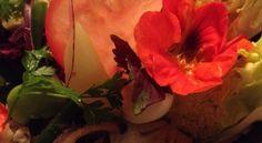 Insalata e fiori freschi a Cala Rossa #CorsicaVivilaAdesso