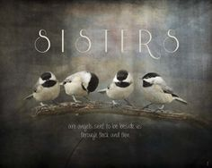 Framed Sisters Chickadees Print