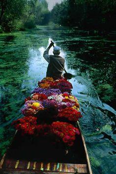 Steve McCurry <3   My favorite photographer.
