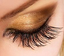 Curly lash with closed eye: http://fortebellezza.com/eyelash-curler-pink