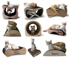 Here's a new line of designer cat scratchers and lounges from Ohmycat! All handmade in Mexico using corrugated cardboard,this collectionhas some great shapes that look like they'd be a big hit with cats. Lots of styles to choose from ranging from about $12 to $74 US, plus shipping. Available for sale from the Ohmycat! online…