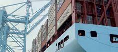 Eine Choreografie aus Containern & Frachtkränen - Eröffnungs Event für die APM Terminals Maasvlakte II
