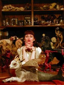 Taxidermy art movement co-founder and pioneer, Sarina Brewer. See the work that was the catalyst for the movement. Celtic Dragon, Celtic Art, Doll House Crafts, Collections Of Objects, Cabinet Of Curiosities, Curiosity Shop, Creature Feature, Artist Art, Art Pictures