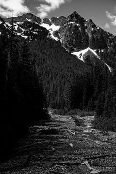 A black and white landscape photograph of Fryingpan Creek and the Cowlitz Chimneys at Mount Rainier National Park, Washington. Mount Rainier National Park, Black And White Landscape, Snow Mountain, Landscape Photographers, Washington State, Sunrise, National Parks, Scene, Photography