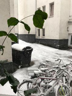 View from window, Kobkenz, Germany, Dec'2017