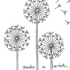Dandelions - would be nice to use when teaching symmetry.