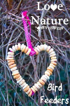 Enjoy your local wild birds and encourage a love of Nature with this heart shaped DIY bird feeder craft for kids.