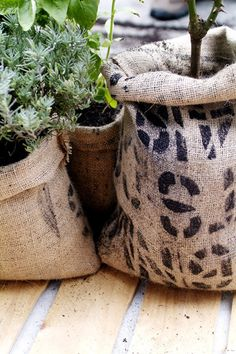 How To Make Coffee Bag Planter Pots
