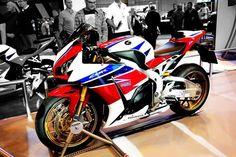 Honda Sport Bikes, Honda Motorcycles, 600 Honda, Honda Fireblade, Ducati Hypermotard, Custom Sport Bikes, Motosport, Sportbikes, Bike Life