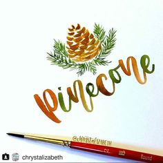 The classic art of calligraphy has become a growing trend in recent years. Brush lettering...Read Article