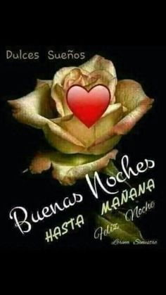 Buenas noches hasta mañana - Costura Tutorial and Ideas Night Messages, Love Messages, Good Night In Spanish, Teddy Bear Quotes, Happy Week, Inspirational Phrases, Motivational Phrases, Good Night Image, Good Night Quotes