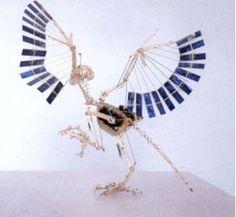 BEWEGING - Panamarenko - 'Archeopterix'.