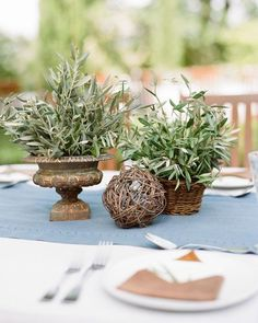 These are the best non-floral wedding centerpiece ideas. They prove that centerpieces don't necessarily require flowers to be beautiful. Vintage Wedding Centerpieces, Bridal Shower Centerpieces, Unique Centerpieces, Flower Centerpieces, Centerpiece Ideas, Wedding Decorations, Potted Plant Centerpieces, Floral Centrepieces, Table Arrangements