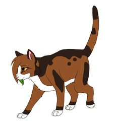 warrior cats pictures of spottedleaf - Google Search