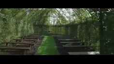 Na Nova Zelândia, no jardim de Brian Cox, existe uma igreja feita de árvores - que demorou 4 anos para ser cultivada.    (Foto: reprodução) (FOTO: REPRODUÇÃO) Cox é o dono de uma empresa chamada Treelocations, que usa uma técnica para plantar árvores de formas diferentes. No seu jardim, ele construiu uma estrutura de ferro em forma de igreja e selecionou plantas que permitissem a entrada da luz solar dentro dessa estrutura. Em 4 anos, ele tinha uma igreja de árvores no jardim.