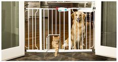 Extra Wide Pet Gate with Door and Extensions Dog Cat Chewproof Steel Expandable #Carlson