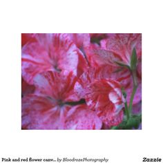 Pink and red flower canvas print