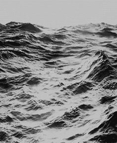 Waves Water, Black And White, Cat Gif, The Ocean, Awesome Gif, Google Search, Waves Photography, Sea Black, The Sea