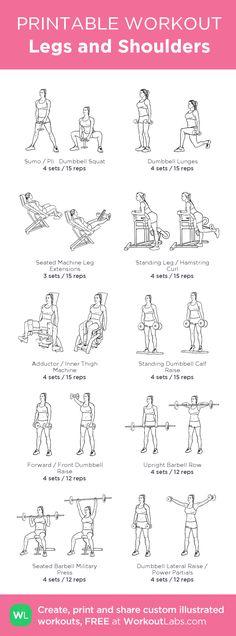 big arms workout routine pdf