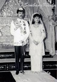 Hasil carian imej untuk sultan azlan shah muda