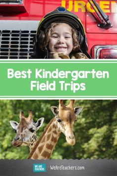 The Best Kindergarten Field Trip Ideas for Out-of-School Learning Community Helpers Kindergarten, Homeschool Kindergarten, Homeschooling, Home Teaching, Atlanta Zoo, Life Under The Sea, Apple Activities, Virtual Field Trips, Outdoor Learning