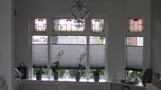Onze jaren 30 woning met erker Good House, Classic House, Shutters, Mom And Dad, Window Treatments, Master Bath, Sweet Home, New Homes, Windows