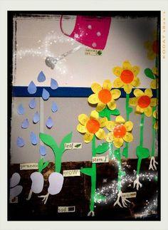 Soy Preescolar: #Ideas para #Decorados   ¿Vas a trabajar una situación didáctica sobre el crecimiento de las plantas o el mundo natural? Qué te parece decorar tu salón de tal manera que te sirva para el proyecto y para, luego, recibir la primavera. ツ   #Amistad #Preescolar; #Manualidades para la #Escuela