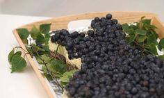 Koko Suomi leipoo -ohjelman kolmannessa jaksossa Irman mustikkapiirakan erikoisuus oli valkosuklaa.