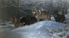 Running Wild by Mark Keathley Wolf Hybrid, Winter Art, Husky, Dogs, Animals, Van, Artists, Running, Wild Dogs