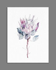 Protea Painting Minimalist King Protea Print Giclee of