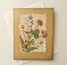 This pressed flowers card features wildflowers I picked while walking my favorite nature trail. Flowers are clover, Forget Me Not, Daisy, Indian Paint Petals, fern and Queen Annes Lace. Card size: 4.25 inches X 5. 5 inches. The thick, gold texture paper highlights these real dried pressed wildflowers. Inside the card is blank. I added a white sheet of paper for you to write your personal message. I also printed Northwest Wildflowers on the bottom left side of the card. I distressed the ed...