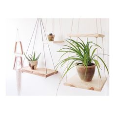 wooden hanging planters / DIY inspo  (@mavencollectpdx on Instagram)