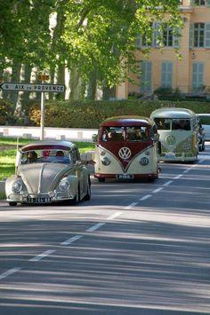 #Volkswagens on parade! #Van #Bus #Beetle #Classic #German #Fun #Cute