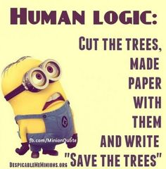 Funny Minions Quotes 087