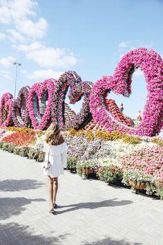 Miracle garden in Dubai - beautiful floral backdrop for photography! Beautiful Gardens, Beautiful Flowers, Beautiful Places, Dubai Garden, Miracle Garden, Dubai Travel, Wanderlust Travel, Belle Photo, Garden Art