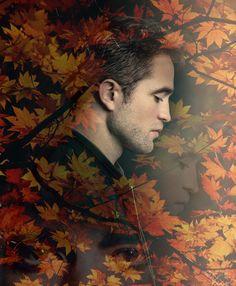 Autumn 2015 ~ wallpaper byNicole2dogs