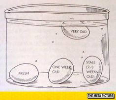 Useful Tip: How To Test The Age Of An Egg