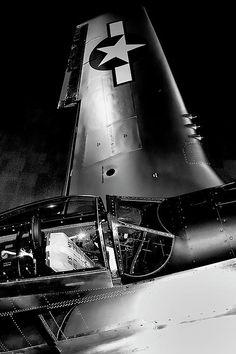 P-51d Mustang_David Patterson